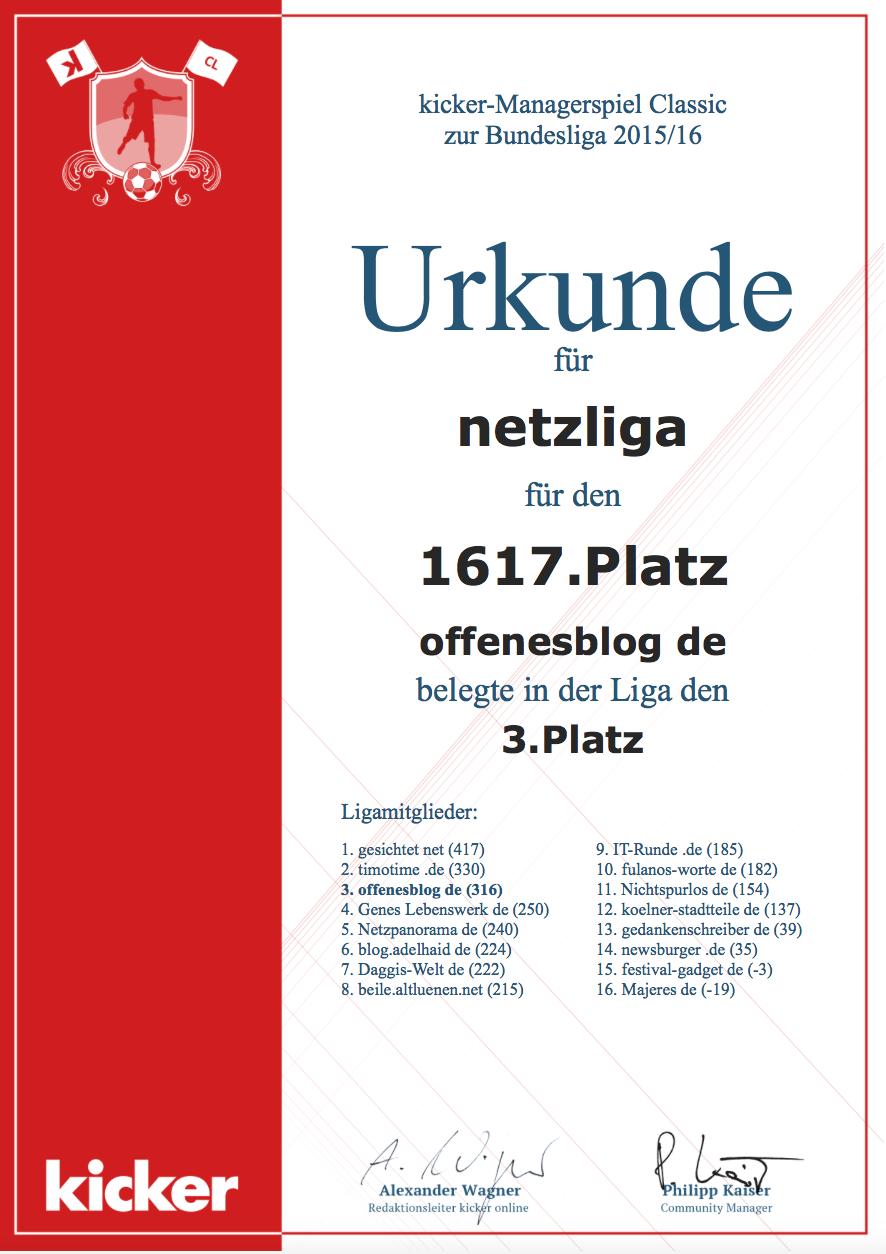 netzliga Saison 2015/16 Urkunde