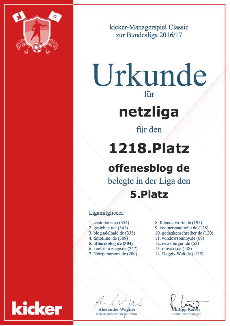 netzliga Saison 2016/17 Urkunde