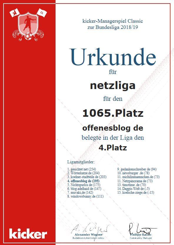netzliga Saison 2018/19 Urkunde